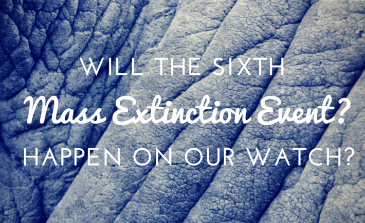 The Sixth Mass Extinction Event